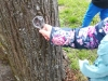 Dalyvaujame tarptautinėje gamtosauginių mokyklų veiksmo savaitėje
